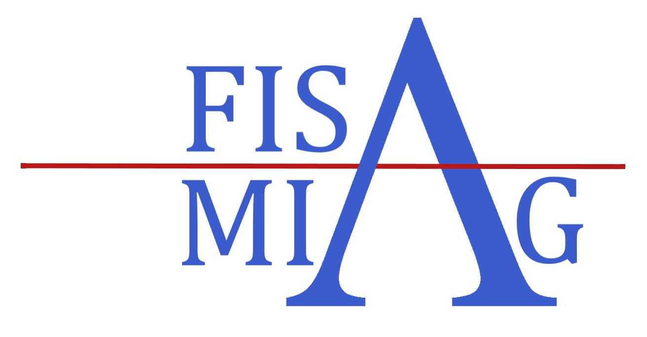 MIAG-FISA